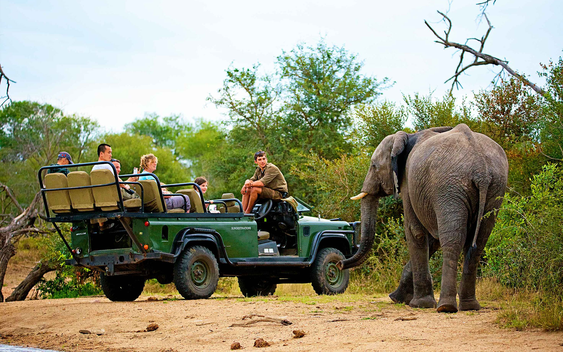 Savanna Safaris Elephant and Vehicle